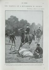 1901 Aufdruck Training Pferde in Amerika Cavalrymen