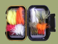 Tungsten Bead Trout Flies 24 Lures Per Box 8 Varieties, Size 10 For Fly Fishing