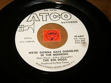 THE RED DOGS - OPEN UP - WE'RE GONNA HATE OURSELVES IN THE   / LISTEN - POP ROCK