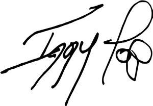 Iggy Pop Signature autograph VINYL DECAL musician stooges punk lust for life