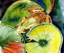 Green Frog Lily Pad 8X10 Watercolor Lake Cottage art print picture Barry Singer
