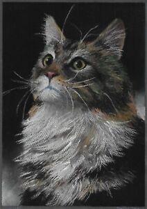 original drawing A4 106DmO art samovar Realism pastel animal cat Signed