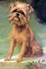 1915 Maud Earl~ Brussels Griffon Puppy Dog Sitting on Step~New Large Note Cards