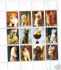 GATTI  - CATS UDMURTIA 2005 1