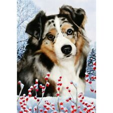 Winter House Flag - Blue Merle Australian Shepherd 15059
