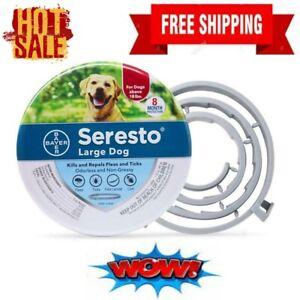🔥Mosquito Flea Repellent Collar 8 Month Flea &Tick Prevention For Dog Cat New🔥
