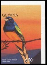 Green-backed Trogon, Birds, Guyana 1996 Imperf MNH (M1n)