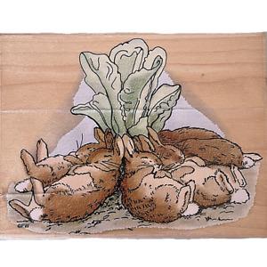 NOS 1998 Beatrix Potter Rubber Stamp, Sleeping Bunnies -Stampendous -Large