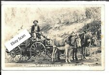 1939 Real Photo Postcard - A Nevada Prospector and his Outfit, (Wells, Nevada)