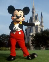 2 WALT DISNEY WORLD 4-DAY HOPPER* TICKETS DISCOUNTED WITH TIMESHARE TOUR