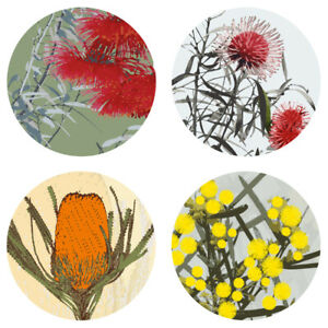 Set of 4 Coasters- Australian Native Flowers-LAST ONE LEFT