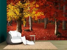 Forest Trees Plants Autumn Leaves Wall Mural Photo Wallpaper GIANT WALL DECOR