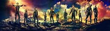"The Hunger Games 2 Catching Fire Movie Silk Fabric Poster 14""x49"""