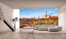 Sonoran Desert Wall Mural Photo Wallpaper GIANT DECOR Paper Poster Free Paste
