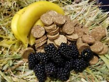 Banana Blackberry & Oaten Hay Cookie Treats for Pet Bunny Rabbit