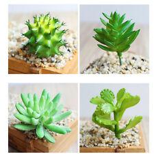 Artificial cactus plant plants succulent decor succulents home grass foliage UK
