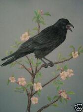 Original Pastel Drawing Black Bird Crow & Apple Flowers Sally Porter Wildlife