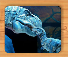 DINOSAUR T-REX MOTHER AND SON IN BLUE MOUSE PAD -ljk9Z
