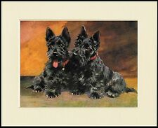 SCOTTISH TERRIER TWO DOGS CHARMING DOG PRINT MOUNTED READY TO FRAME