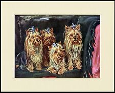 YORKSHIRE TERRIER FOUR DOGS LOVELY DOG PRINT MOUNTED READY TO FRAME