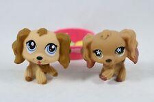 Hasbro LITTLEST PET SHOP LPS Cocker Spaniel Puppy Dogs 716 1318 + Accessories