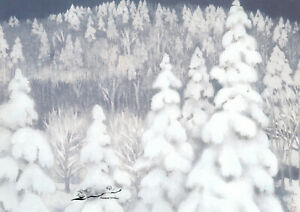 Postkarte: Higashiyama Kaii - Winterwald / schneebedeckte Bäume