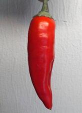 10+ Fresh Aji Crystal Pepper Seeds