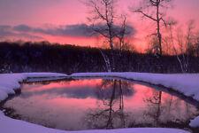 Landscape Nature Lake Forest Winter Sunset 24x36 Big print photo SILK POSTER