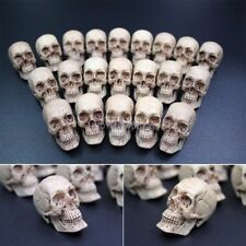 1 Pcs 1/6 Custom Made Resin Anatomical Skull Scenes Accessory for 12in. figures