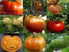 LOTS DE 3 X 20 GRAINES DE TOMATE ANCIENNES (ananas,green z,russe)9 BIO AUX CHOIX