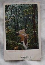 1904 H. M. & Co. POSTCARD - ECCLESBOURNE GLEN, HASTINGS