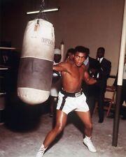 * Muhammad Ali  8x10  photo  FREE US SHIPPING