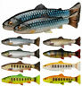 Savage Gear 3D Craft Trout PulseTail 16cm or 20cm 1pc great lures NEW 2021