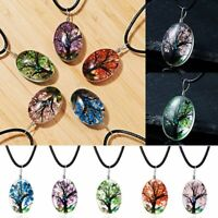 Natural Real Dried Flower Glass Floating Locket Pendant Necklace Sweater Chain