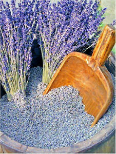 Dried Lavender Highly Fragrant - Top quality French very fragrant lavender 500g