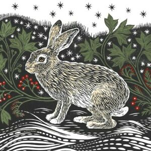 Museums & Galleries - Starlight Hare Pack of 8 Charity Christmas Cards