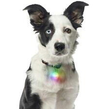 pet tag dog collar light Carabiner LED Reflective Waterproof collar charm lightw