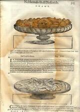 Stampa antica ERBARIO MATTIOLI MATTHIOLI Conchiglie Chame 1604 Old antique print
