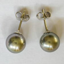 TAHITIAN PEARL EARRINGS 9mm CULTURED PEARLS REAL 9K 375 9CT WHITE GOLD STUDS NEW