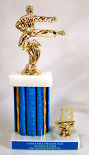 "Marial Arts 10"" Trophy - Free Engraving"