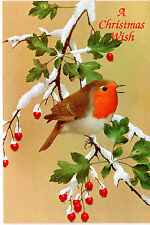 UNUSED Vintage Christmas Card-   ENGLISH ROBIN ON SNOWY BRANCH w. Envelope