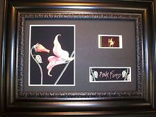 PINK FLOYD Framed Movie Film Cell Memorabilia - Compliments poster flowers