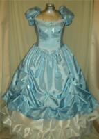 Southern Belle Cinderella Princess Civil War Ball Gown Dress, Your Size Choice