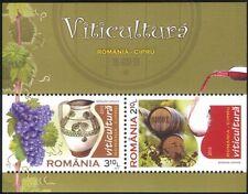 Rumania 2010 vino haciendo/Alcohol/Bebidas/uvas/plantas/Barriles/Jarra 2v m/s (n44684)