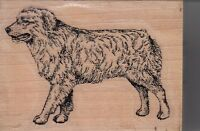 "aussie shepherd stamp cabana Wood Mounted Rubber Stamp 2 x 3""  Free Shipping"