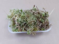 Fresh sphagnum moss portion; reptiles invert's orchids spiders dart frogs eggs