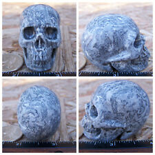 """2.0"""" Chinese Crazy Lace Skull Carved Stone 3.5oz 98.5g Crystal Healing Realistic"""