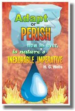 Adapt or Perish - Fire - New Classroom Motivational Quote Poster (cm979)