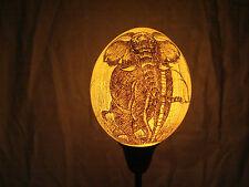 Straußeneilampe Elefant Bulle scimshaw Straußenei Lampenschirm S8