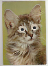 CARTE POSTALE CHAT  YEUX QUI BOUGE